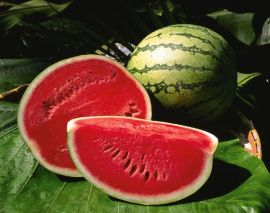 Watermelon Festival in Carlsbad, CA